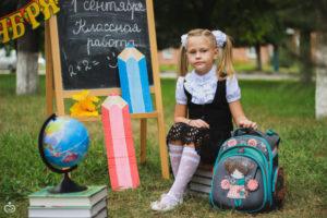 Автоматизация школьных процессов в СКДОУ